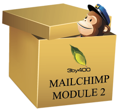 3by400 MailChimp Module2