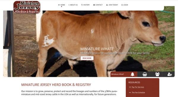 Miniature Jersey Herd Book